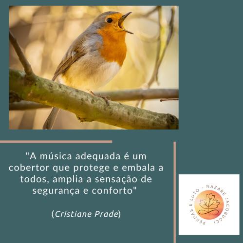 Post_Música_CP